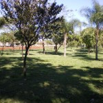 parque_maurililo_3